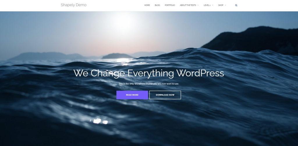 Shapely - Template WordPress Ottimo per un portfolio o sito vetrina